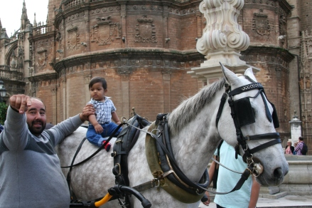 baby on a horse- Seville, Spain