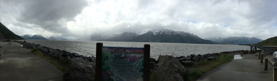 TurnAgain Arm | Glass Wheels Travels
