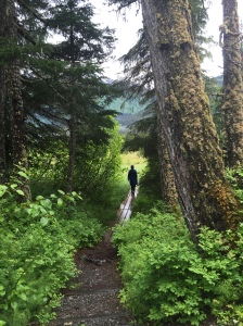 Trail in Girdwood AK | Glass Wheels Travels