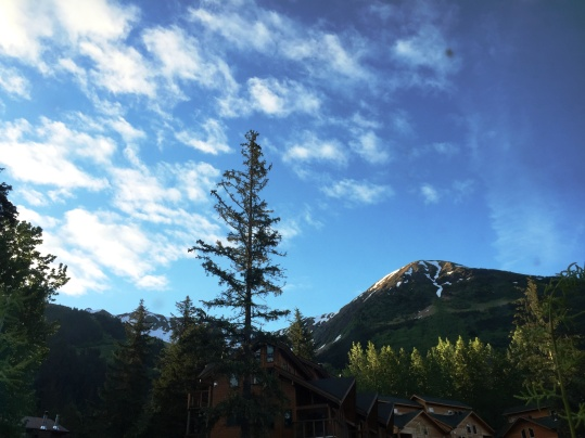 View on a sunny day from our B&B, GIrdwood | Glass Wheels Travels